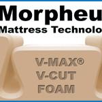 Morpheus Plus™
